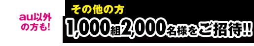 ���̑��̕� 1,000�g2,000���l��������!