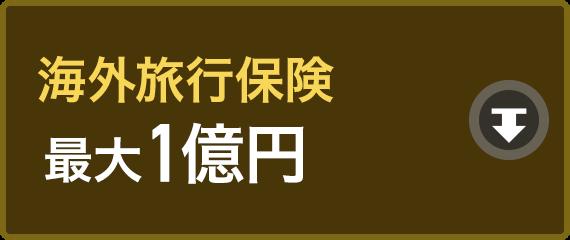 海外旅行保険最大1億円