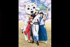 『銀魂 銀祭り2019(仮)』ライブビューイング