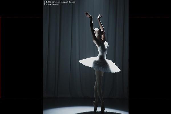 ボリショイ・バレエ in シネマ Season 2019 - 2020『白鳥の湖/Swan Lake』