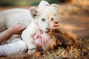 ミアとホワイトライオン 奇跡の1300日
