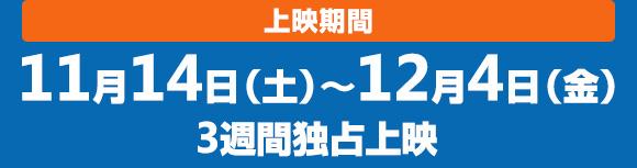 11月14日(土)〜12月4日(金)3週間